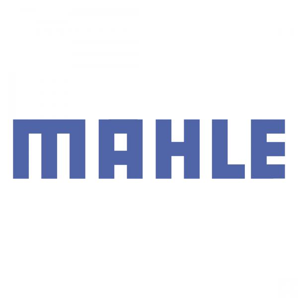 Mahle Diagnostics place holder